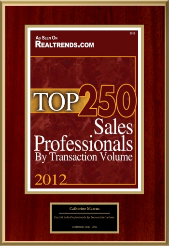 Top 250 Sales Professionals By Transaction Volume