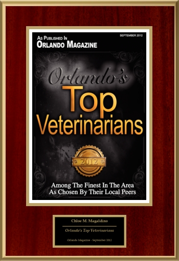 Orlando's Top Veterinarians