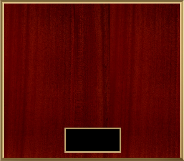 Loading recognition image...